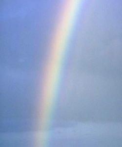 Magazine - Rainbow